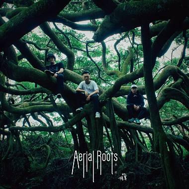 氣根 Aerial Roots