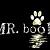 mr.book小亮