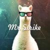 Mr.STRIKE