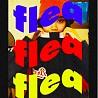 跳蚤FLEA