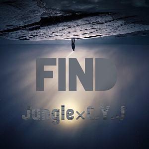 Jungle,C.Y.J(ChenYoungJiang) - 找