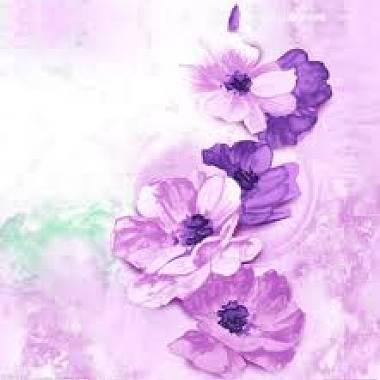 紫苑【歌ってみた】