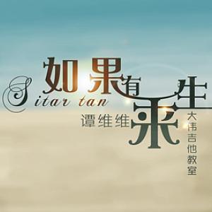 如果有來生-譚維維(cover)