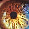 看著我的眼睛 (DEMO)