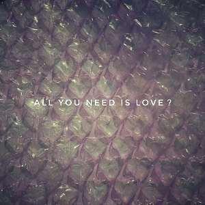 你不会喜欢我的大脑(aka. All you need is love?)